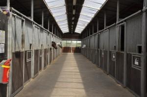 ecuries de propriétaires lille verlinghem chevaux
