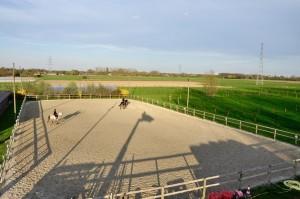 carriere- installations pension pour chevaux et poney lille verlinghem
