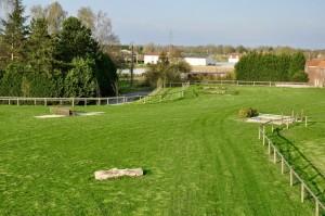 Terrain de cross- installations ecuries chevaux lille verlinghem