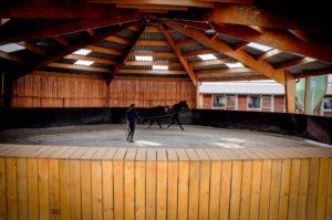 Ecuries des huards, écuries de propriétaires Lille Verlinghem-rond de longe cheval